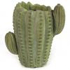 762671 Blómapottur kaktus grænn